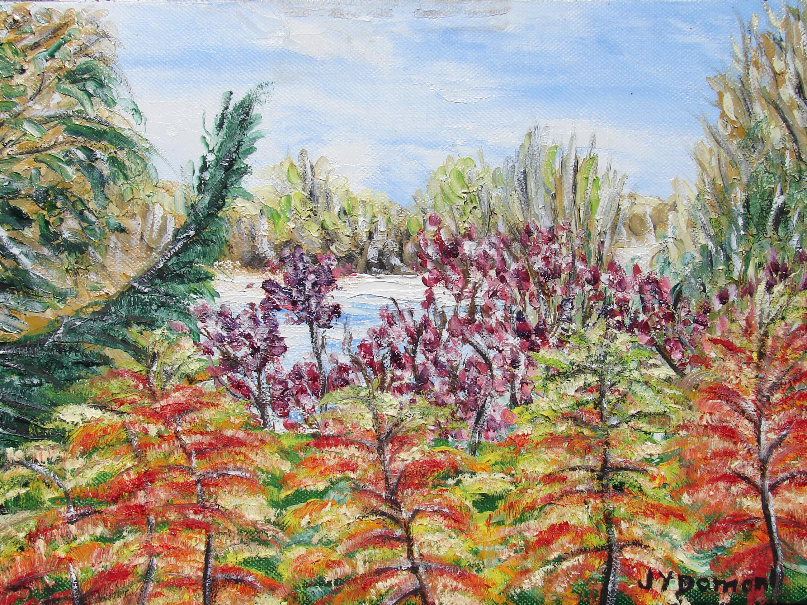 Eclats d'automne aux chutes Hunter / Canada