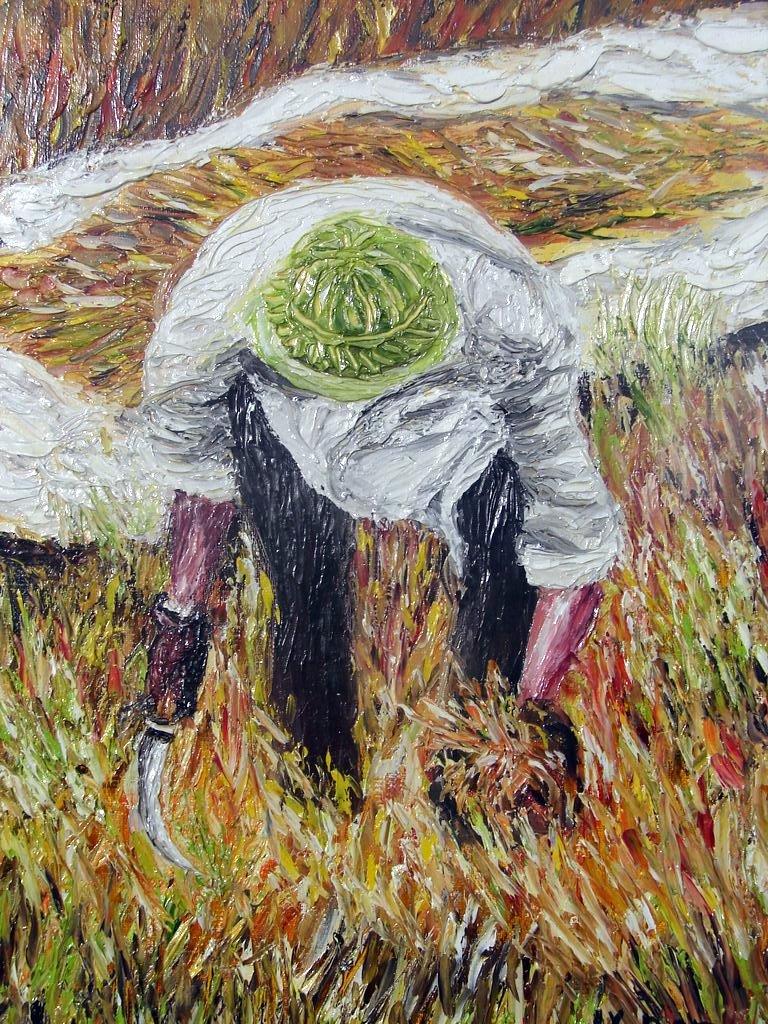la moisson du riz / Vietnam