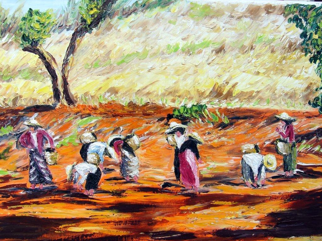 travail aux champs / Birmanie