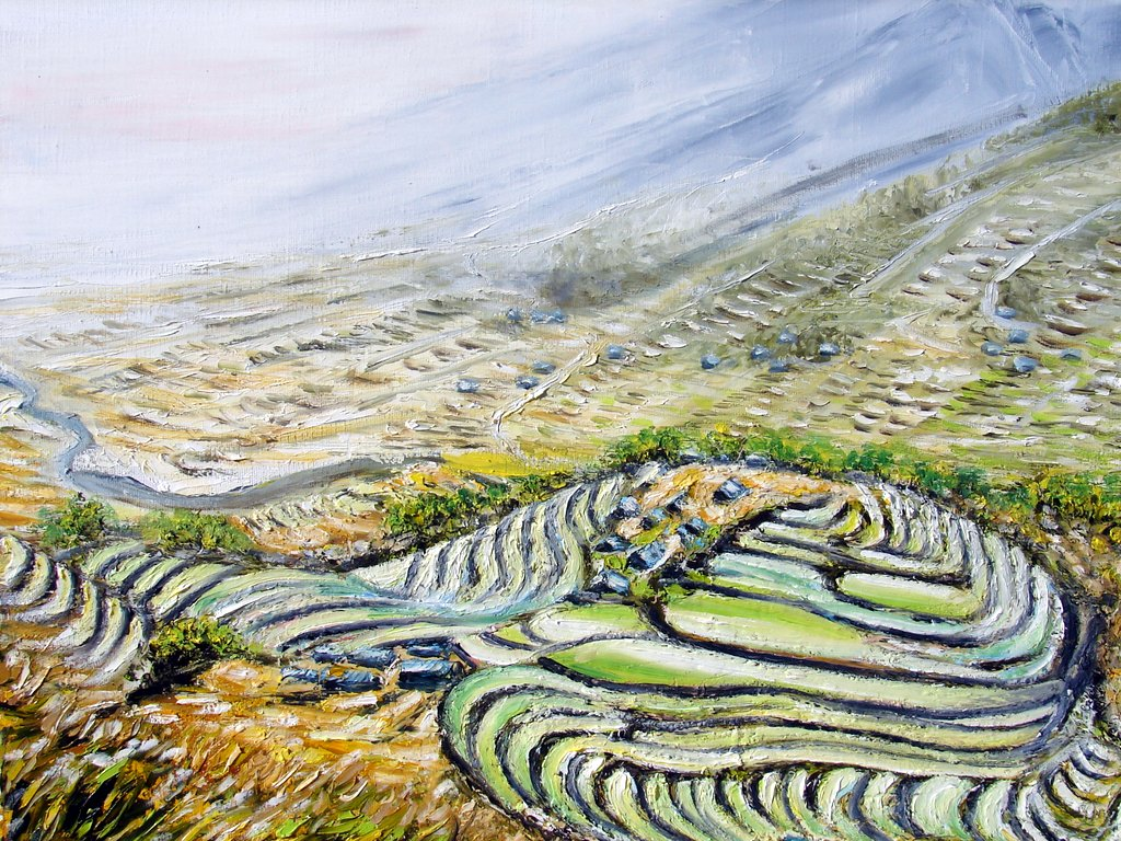 les rizières dans la montagne / Vietnam
