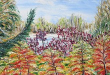 Eclats d'automne aux chutes Hunter ( Canada )